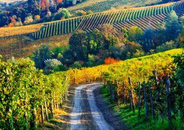 Piemonte 2019 – La Regione più bella